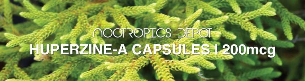 buy-huperzine-a-capsules.jpg