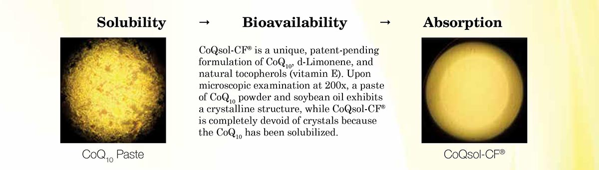 CoQ10 Solubility
