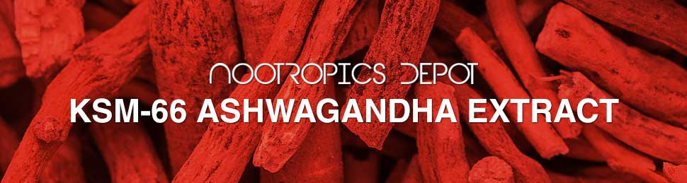 Buy KSM 66 Ashwagandha Powder