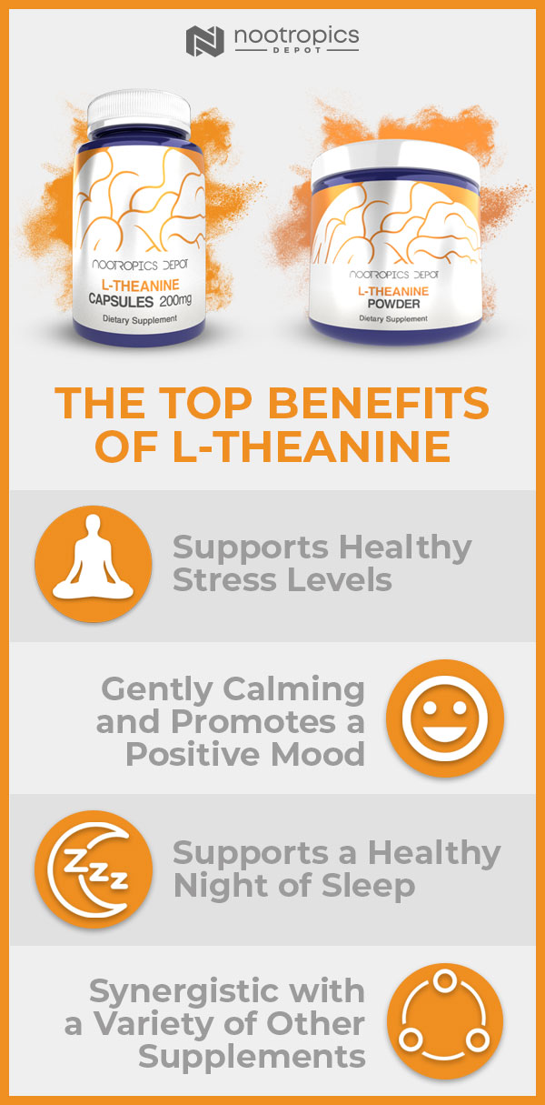 L Theanine Infographic: The Top Benefits of L-Theanine