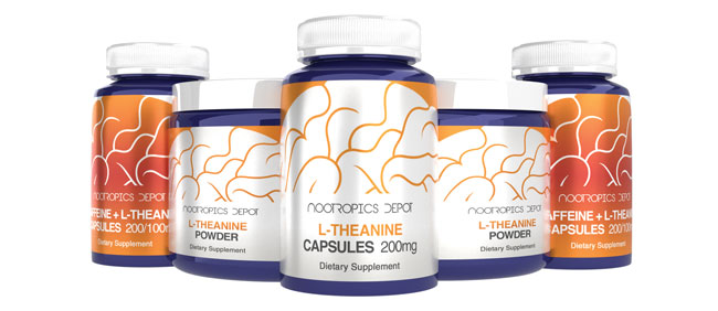 Buy L-Theanine Supplements from Nootropics Depot