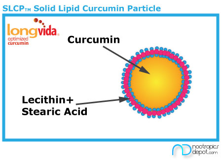 Solid Lipid Curcumin Particle