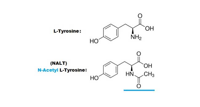 Difference Between L-Tyrosine and NALT