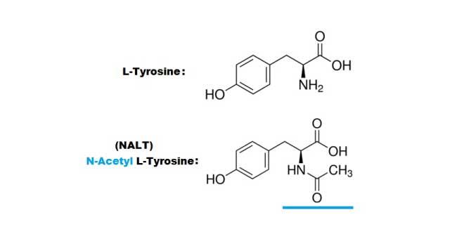 NALT vs L-Tyrosine