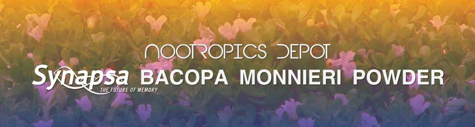 Synapsa Bacopa Monnieri